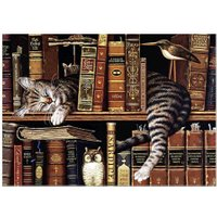 Bookshelf Cat 5D DIY Oil Canvas+Resin Diamonds Painting Home Decor Crafts